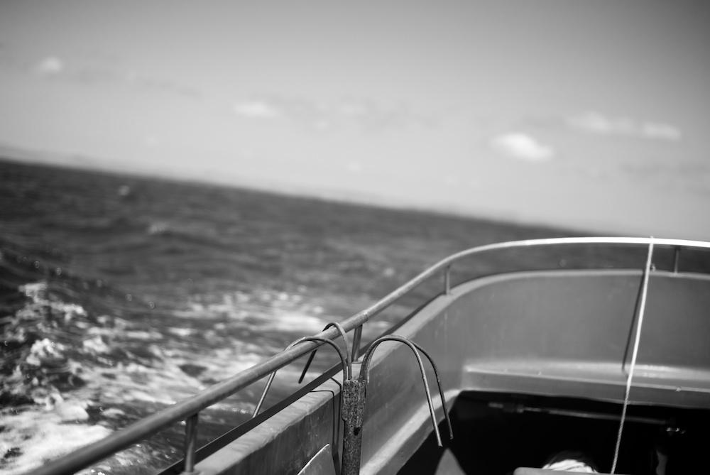 На връщане след богатия улов